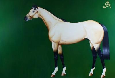 Cavalo Baio ll