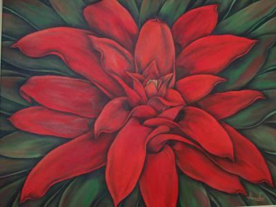 Bromélias Vermelhas